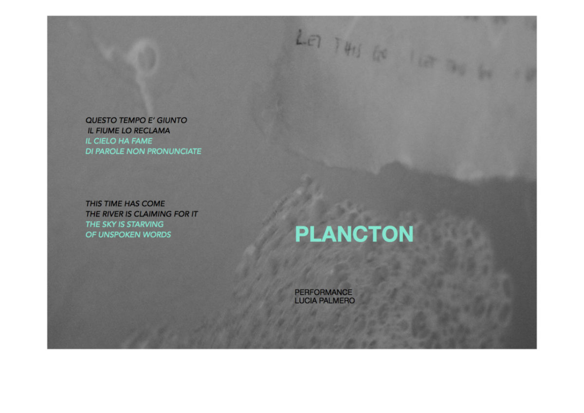 PLANCTON Flyer